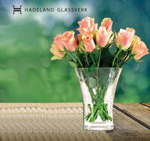 Bilderesultat for brilliant tulipanvase hadeland glassverk