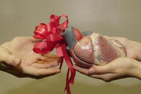 Organdonasjon - gi litt av deg selv